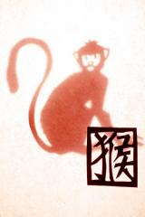 Aap chinese astrologie