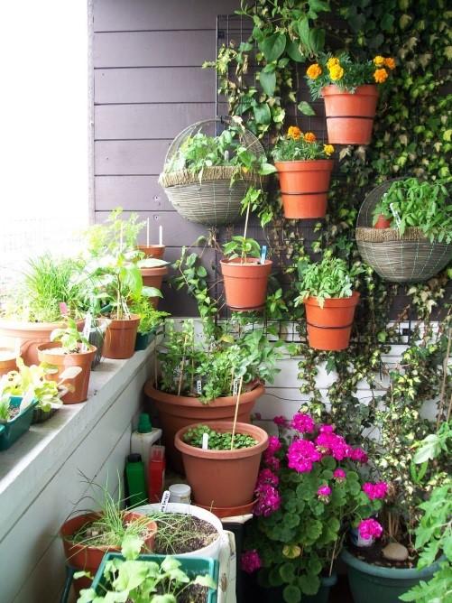 natuurlijk tuinieren